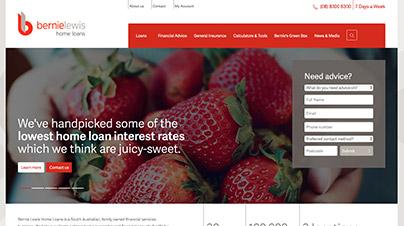 Bernie Lewis Home Loans